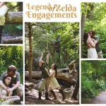 Legend of Zelda Engagements