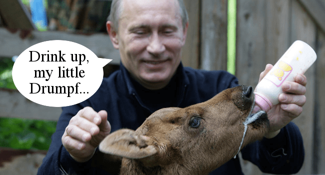 Putin Feeds Drumpf