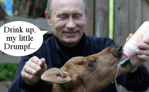 Putin Feeds Drumpf