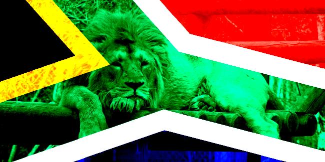 Lion Afua Hirsch heroes