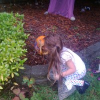 10 Preschool Activities using Leftover Pumpkins