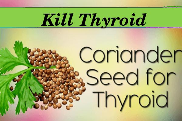kill Thyroid with Coriander Seeds