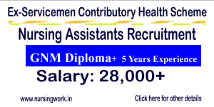 ECHS GNM Nursing with 5 years Experience Jobs