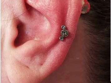 auricle piercing information