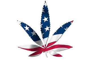marijuana_american_flag