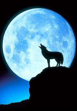 Midnight_in_America