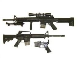 Stag2wi Semi Auto Rifle
