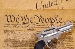 constitutionguncontrol