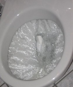 Flushing-Toilet-460x549