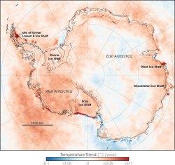 Antarctic Temperature Trend 1981-2007