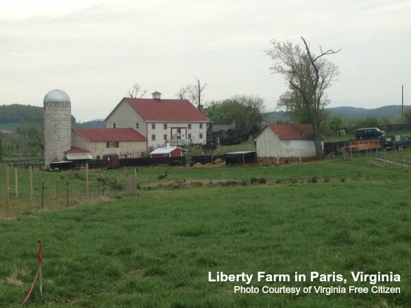 Paris-Farm-Martha-Boneta