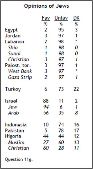 2010-muslim-nations-18
