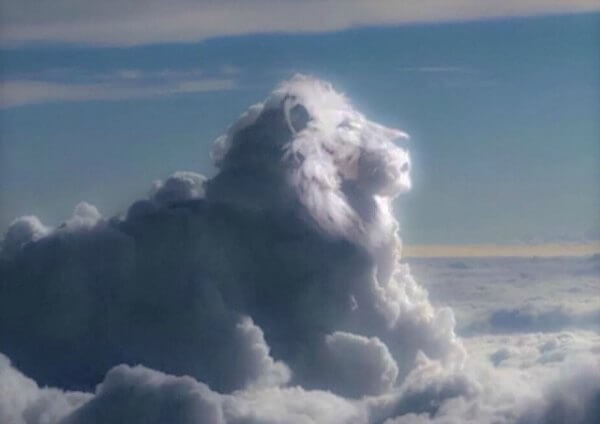 lion-cloud-2