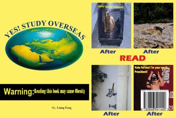 yes study overseas