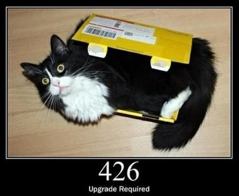 426 Upgrade Required The client should switch to a different protocol.