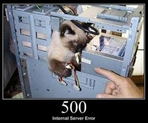 500 Internal Server Error A generic error message, given when no more specific message is suitable.