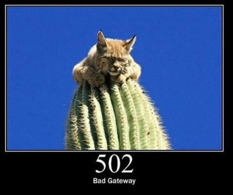 502 Bad Gateway  The server was acting as a gateway or proxy and received an invalid response from the upstream server.