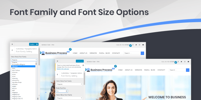 Font Family and Font Size Options