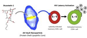 HIV now curable www.rihl.in initiative