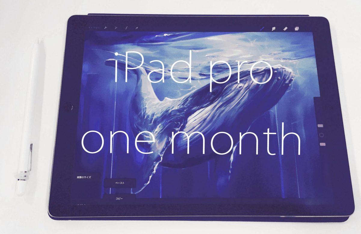 絵かきがiPadを装備して一ヶ月【クリスタとProCreateの線の差がひどいぞ】