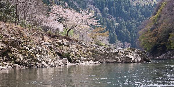 hozugawa arashiyama