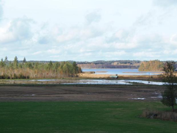 En våtmark kan ha mångsidiga verkningar. Våtmarken på bilden renar avrinningsvatten, erbjuder en livsmiljö för sjöfåglar, ger liv åt landskapet och förbättrar dräneringen av åkrarna ovanför.