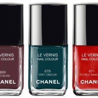 Chanel Fall 2015 Nail polish