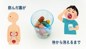 飲んだ医薬品が体内から消失するまで