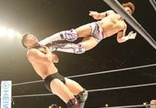 wrestling-1645823__180