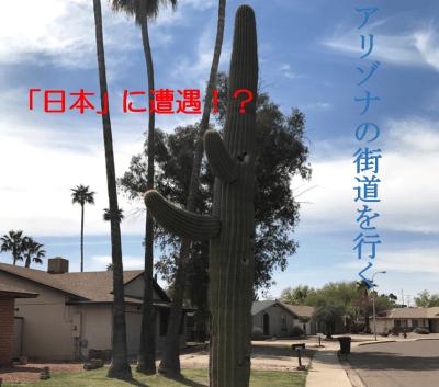 アリゾナで日本だと!?和を求めて旅に出てみた。