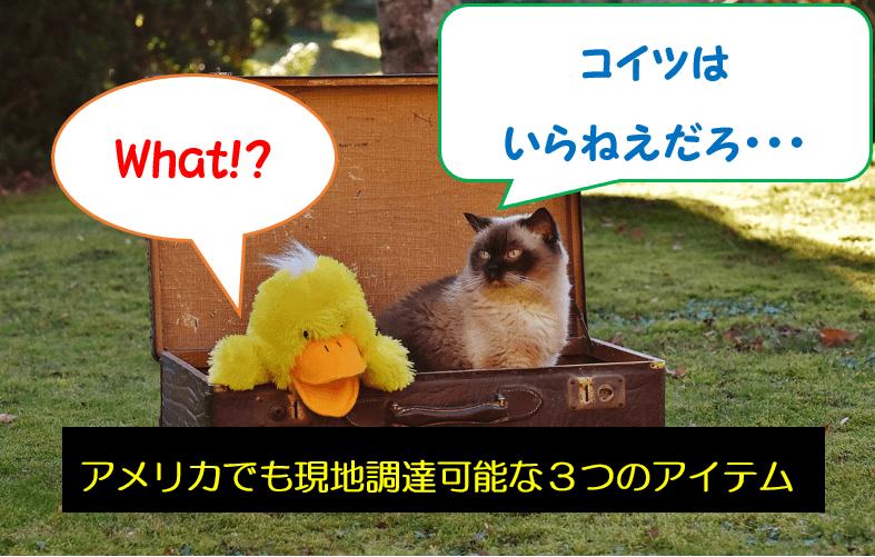 【荷造り】アメリカでも現地調達!日本から持ってくる必要なかったなと思う3つのモノ