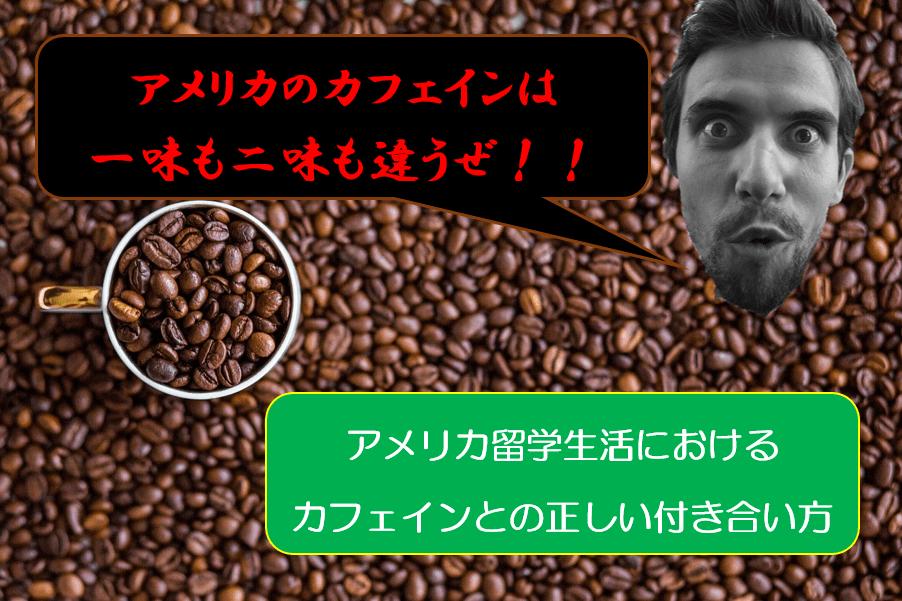 【飲みすぎ危険】アメリカ留学にカフェインは欠かせない?あっさり飛翔するので注意