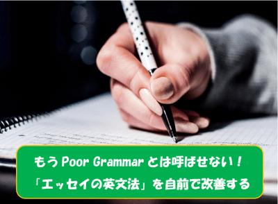 もうPoor Grammarとは呼ばせない!海外留学「エッセイの英文法」を自前で改善する