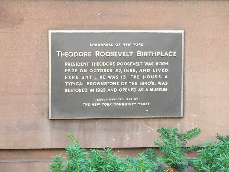 Theodore Roosevelt Birthplace