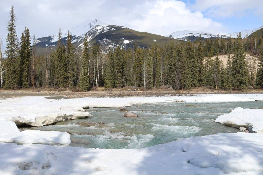 The Rocky Mountains behind a thawing river