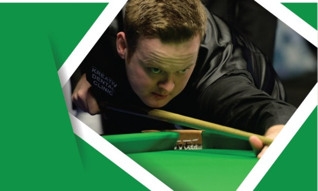 Shaun Murphy Exhibition at D'Arcy McGees Spawell