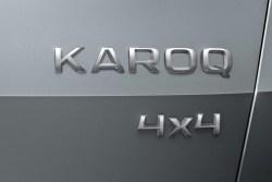 logo skoda karoq