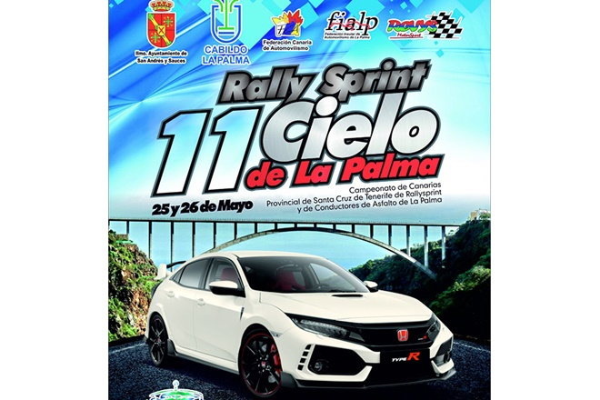Placa RS Cielo Palma 2018 recorte