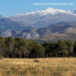 LLANO DE LA PERDIZ Un lugar ideal para pasar un día de campo muy cerca de la capital