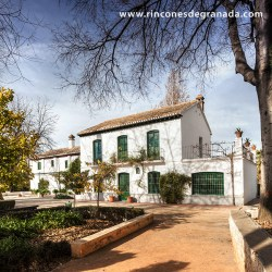 CASA MUSEO – FEDERICO GARCIA LORCA La familia García Lorca habitó esta casa desde 1926 hasta 1936