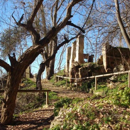 Parque Cultural Cesna - Foto: Junta de Andalucía