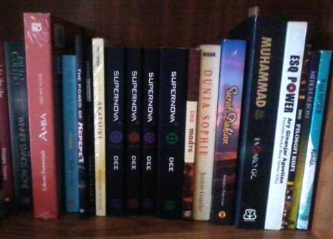 Sebagian buku yang terselamatkan