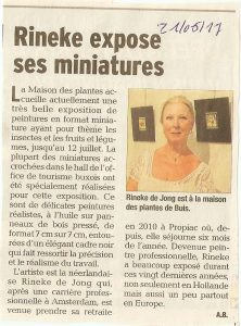 Rineke expose ses miniatures