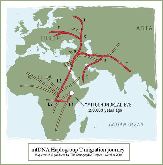T_MigrationMap_cw.jpg