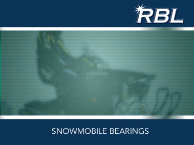 RBL Snowmobile Bearings