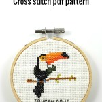 Toucan do it cross stitch pdf pattern - Ringcat