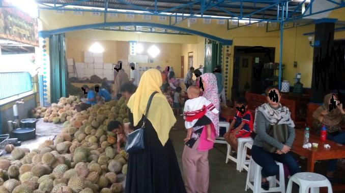raja durian