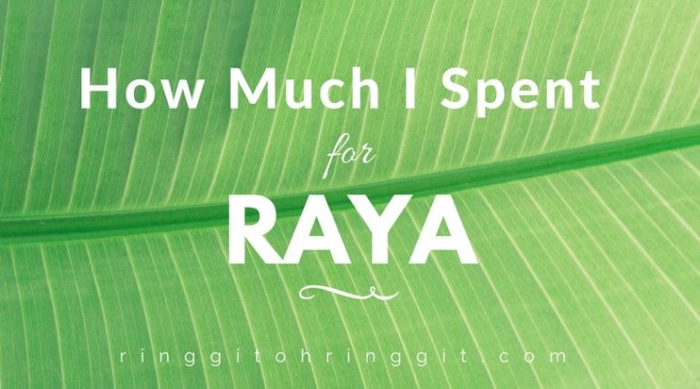 How Much Was My Raya Spending in 2017? Exactly RM2,095