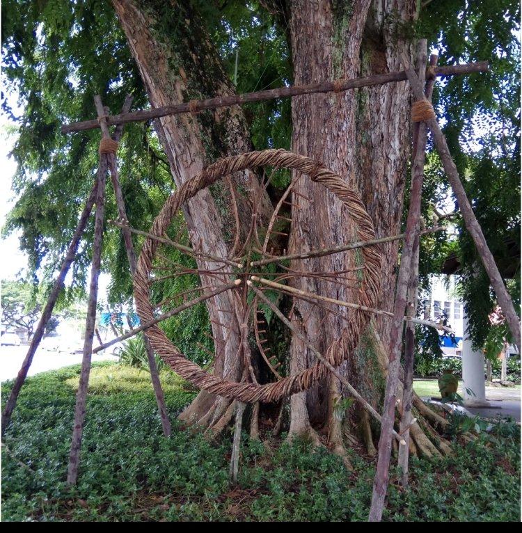 Rainforest Fringe Festiva