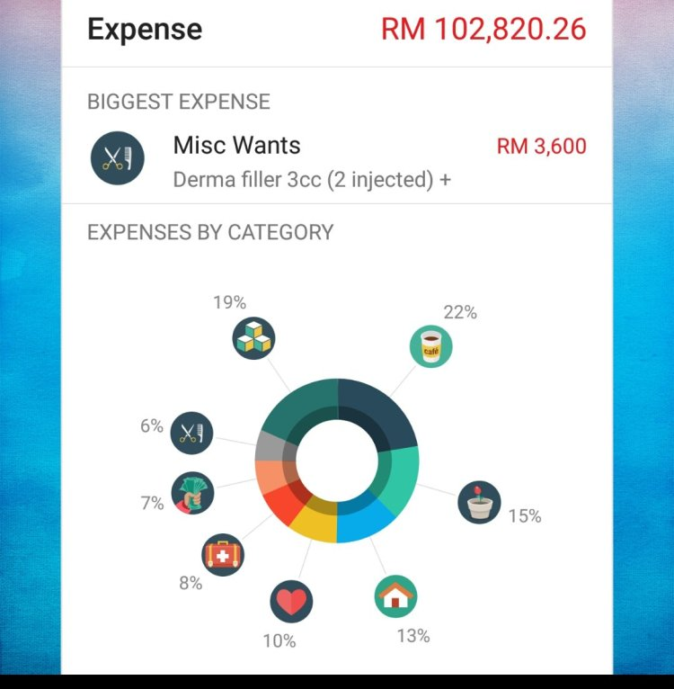 income and expenses